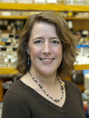 Susan Cole, PhD